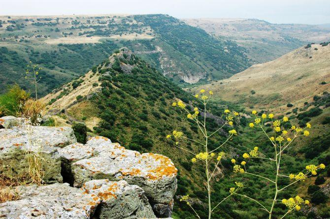 Sites We Visit - Golan Heights - gamla5-